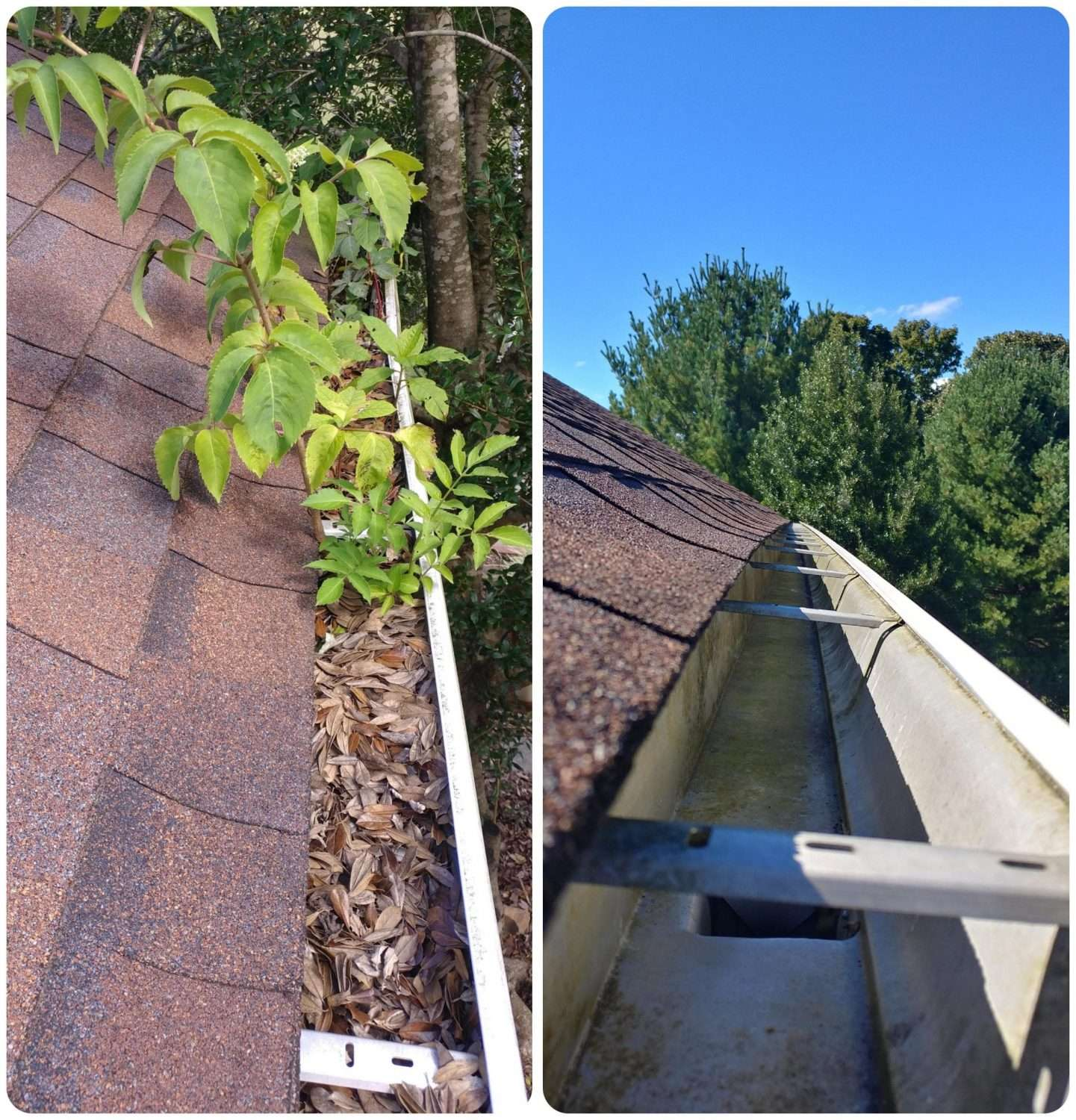 gutter cleaning service pro 4 scaled